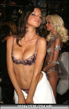 http://i4.imageban.ru/out/2010/10/09/0d42b1291b12642e05de5e2bd23ae275.jpg