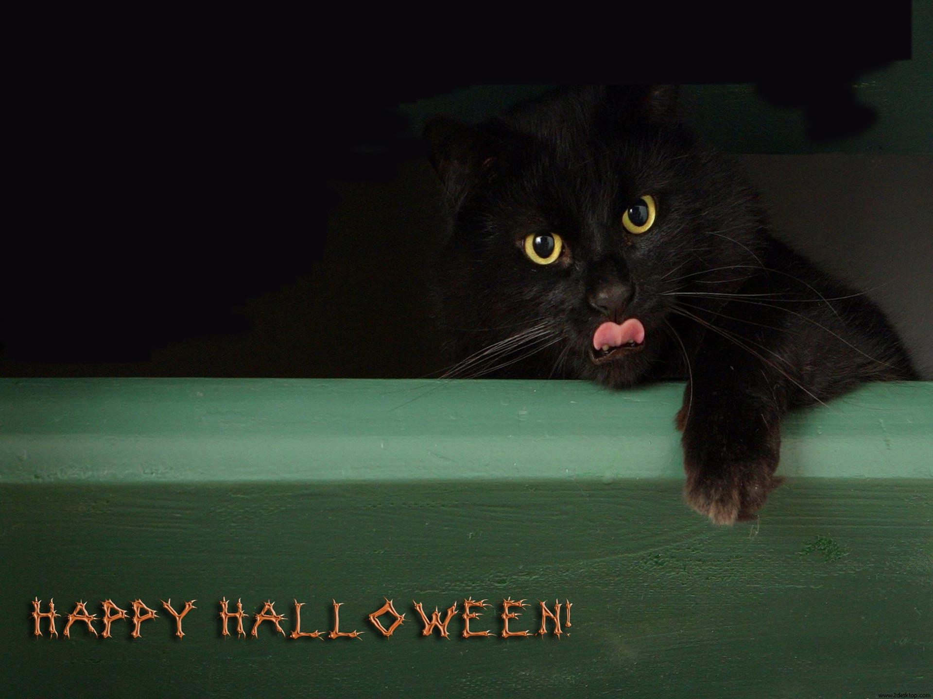 Happy_Halloween_All_Saints__Day.jpg