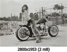 http://i4.imageban.ru/out/2010/12/03/5fb97f7c9b11cbe1ab32d0b3094fe2ff.jpg