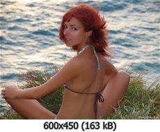 https://i4.imageban.ru/out/2010/12/13/149376ed6ff5d8c29779b6d54ad1bb1c.jpg