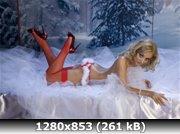 http://i4.imageban.ru/out/2010/12/20/8d1418f1485d8cf1a6579f3e3fec335f.jpg