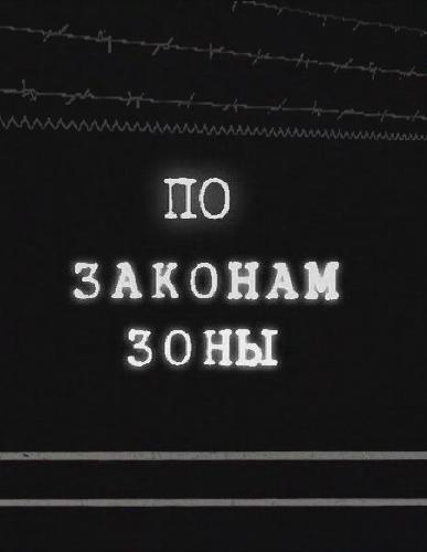 По законам зоны (2010) Смотреть онлайн