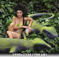 http://i4.imageban.ru/out/2011/01/11/254749627c7f7c1eb298239c2c4bd1c7.jpg