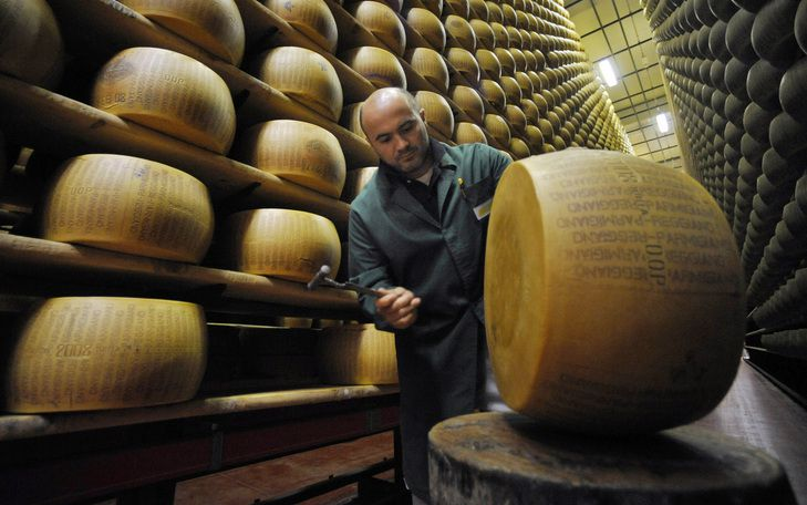Интересности о сыре
