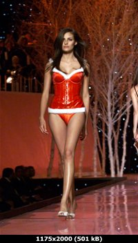 http://i4.imageban.ru/out/2011/02/20/a36cada2cd1603847c8b7fd8749cef0e.jpg