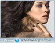 http://i4.imageban.ru/out/2011/02/28/8bba842fb72be163628e134d6619bb36.jpg