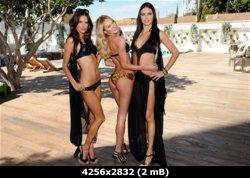 http://i4.imageban.ru/out/2011/03/31/7f8d2e53bc75635ae31c8e6e3828cad5.jpg