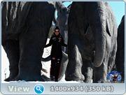 http://i4.imageban.ru/out/2011/03/31/edbddffb1db9ce2afd4d13039911c2f7.jpg