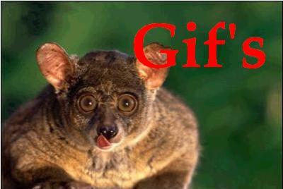 Gif-подборка