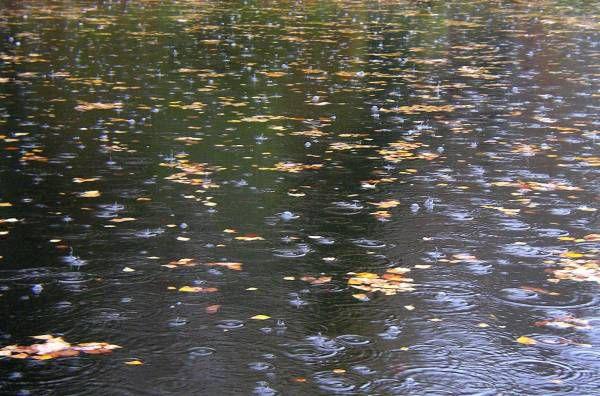 Всё ли знаем мы про дождь?