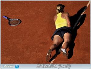 http://i4.imageban.ru/out/2011/05/15/04d6a0aee01437532476f1a79bd0330f.jpg