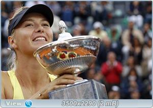 http://i4.imageban.ru/out/2011/05/17/dc27aab20f09908bcf61631b03283bc9.jpg