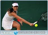 http://i4.imageban.ru/out/2011/06/22/9106fa83d3797902937c1e064e7f100c.jpg