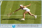 http://i4.imageban.ru/out/2011/06/22/e00efb3a62a2319313f8030ef05bf9e2.jpg