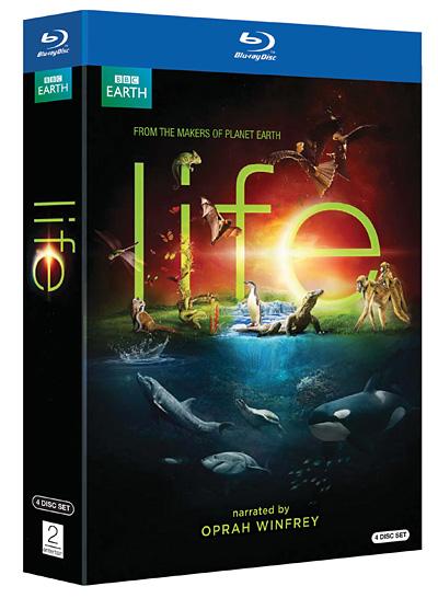 Жизнь / Life (Марта Холмс, Саймон Блэкни, Стефен Лайл / Martha Holmes, Simon Blakeney, Stephen Lyle) [2009 г., документальный, BDRip 1080p] BBC