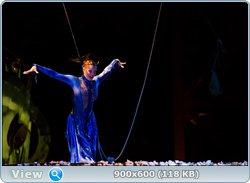 http://i4.imageban.ru/out/2011/08/15/147dce2091e43f824aa167088c35913a.jpg