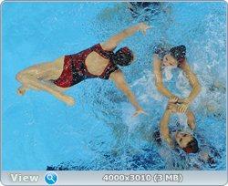 http://i4.imageban.ru/out/2011/08/25/00c7861ef1923f8ed4569540d84d5bd5.jpg