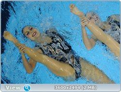 http://i4.imageban.ru/out/2011/08/25/16a72e95a1abcf37a9fa0b242e16951c.jpg