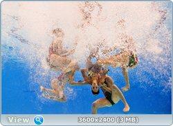 http://i4.imageban.ru/out/2011/08/25/1ff951cb8f3e3ed5d9dba3856fa54c5f.jpg