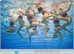 http://i4.imageban.ru/out/2011/08/25/2090ca09eb7ec7f2a7e26b2358d926c6.jpg