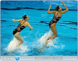 http://i4.imageban.ru/out/2011/08/25/266438d7468ce630b66e6533845e397f.jpg