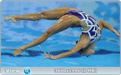 http://i4.imageban.ru/out/2011/08/25/506035f5cfc5d1b33809429f5f41e920.jpg