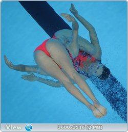 http://i4.imageban.ru/out/2011/08/25/545ec504151994372323be12df85b04b.jpg