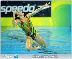 http://i4.imageban.ru/out/2011/08/25/9101835de4ccb4c5bdfbd7c1279f1fdb.jpg