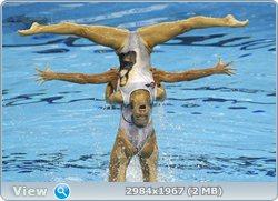 http://i4.imageban.ru/out/2011/08/25/d8ca23bf7e36d0b9334de80bffde3064.jpg
