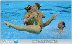 http://i4.imageban.ru/out/2011/08/25/ef87685a55f985b4fcd9057f682dcae4.jpg