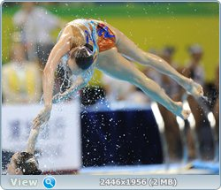 http://i4.imageban.ru/out/2011/08/25/fe9b2413138cb1f0579a445704a115d4.jpg