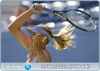 http://i4.imageban.ru/out/2011/08/30/76a7a5fd09a97524966c13f105662b04.jpg