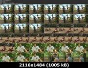 https://i4.imageban.ru/out/2011/10/02/fbba8d2b63399e2f6117acd7f2e1b67e.jpg