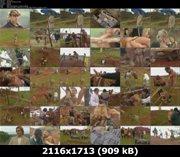https://i4.imageban.ru/out/2011/10/09/ab7ca2b182e6854d07ac1336949652b2.jpg