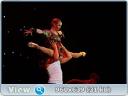 http://i4.imageban.ru/out/2011/12/06/eed4f525653716c35bb5471df008dceb.jpg