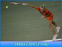 http://i4.imageban.ru/out/2012/03/16/de4032f43aa384df317f5eb8561b1fd2.jpg