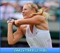 http://i4.imageban.ru/out/2012/04/05/2f230eef4918fa99dc5f0e37357c7b37.jpg