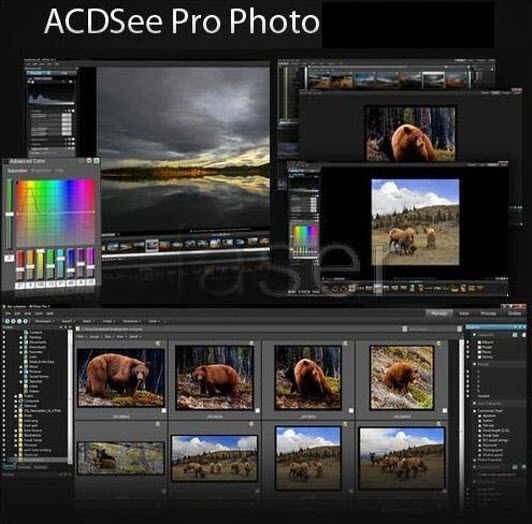 Acdsee 7 crack - free download - (5 files) .