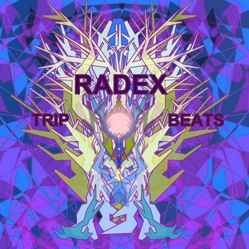 Radex - Trip Beats (2012)