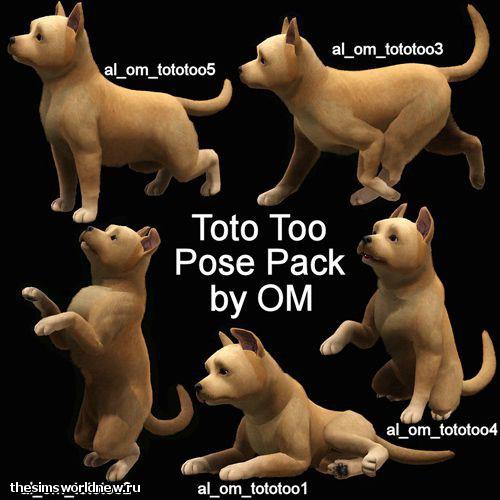 allposes-toto.jpg