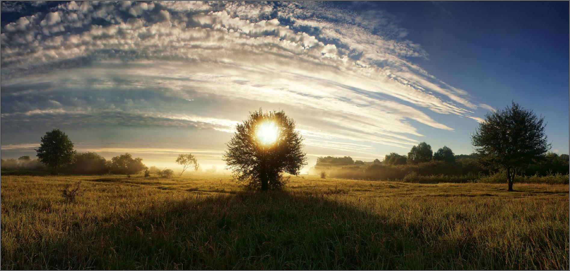 http://i4.imageban.ru/out/2012/07/30/7ccf7975edeae79ef8c1c8d0b6790c09.jpg