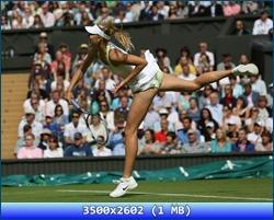 http://i4.imageban.ru/out/2012/10/06/8311cec18f95b0357e5e2ded40f8f58e.jpg