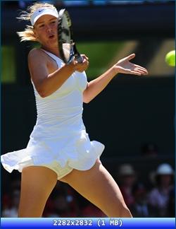 http://i4.imageban.ru/out/2012/11/02/38aae5c8b549ea9998a53d059d13a8f8.jpg