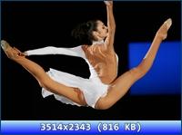 http://i4.imageban.ru/out/2012/11/17/82524594cf26135a0ee7724bec42e8dc.jpg