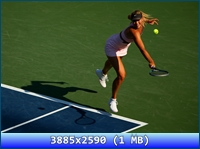 http://i4.imageban.ru/out/2012/11/20/25f5736a741c9bef41596dd7ddb59446.jpg