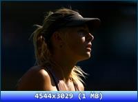 http://i4.imageban.ru/out/2012/11/20/be43a9e9efb3e3bd23a113f76c2eb37e.jpg