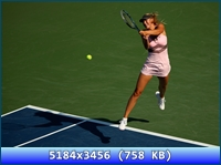 http://i4.imageban.ru/out/2012/11/20/bf88a35e6283ce92c327cf3377a286b6.jpg
