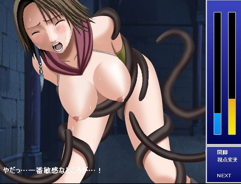 Hentai Flash Games Collection / Коллекция хентай флеш игр [2000-2009] [Ptcen] [Flash, Animation, 3DCG] [ENG,JAP] H-Game