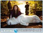 http://i4.imageban.ru/out/2013/06/04/dfa459504cc9c8c1f20449517304d53e.jpg