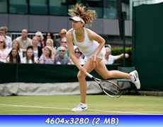 http://i4.imageban.ru/out/2013/06/28/8d10e5a11b23ad35a3e78175770d9ea1.jpg